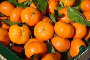 clementines christmas boxes